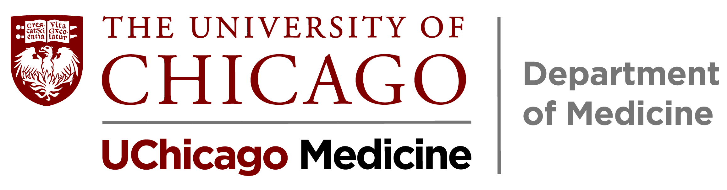 ACGME Fellowship – University of Chicago – Department of